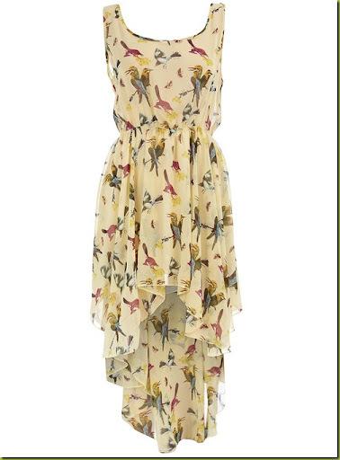 dp-bird-print-dress4