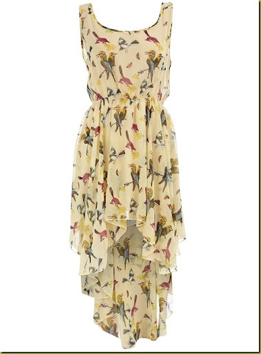dp-bird-print-dress4