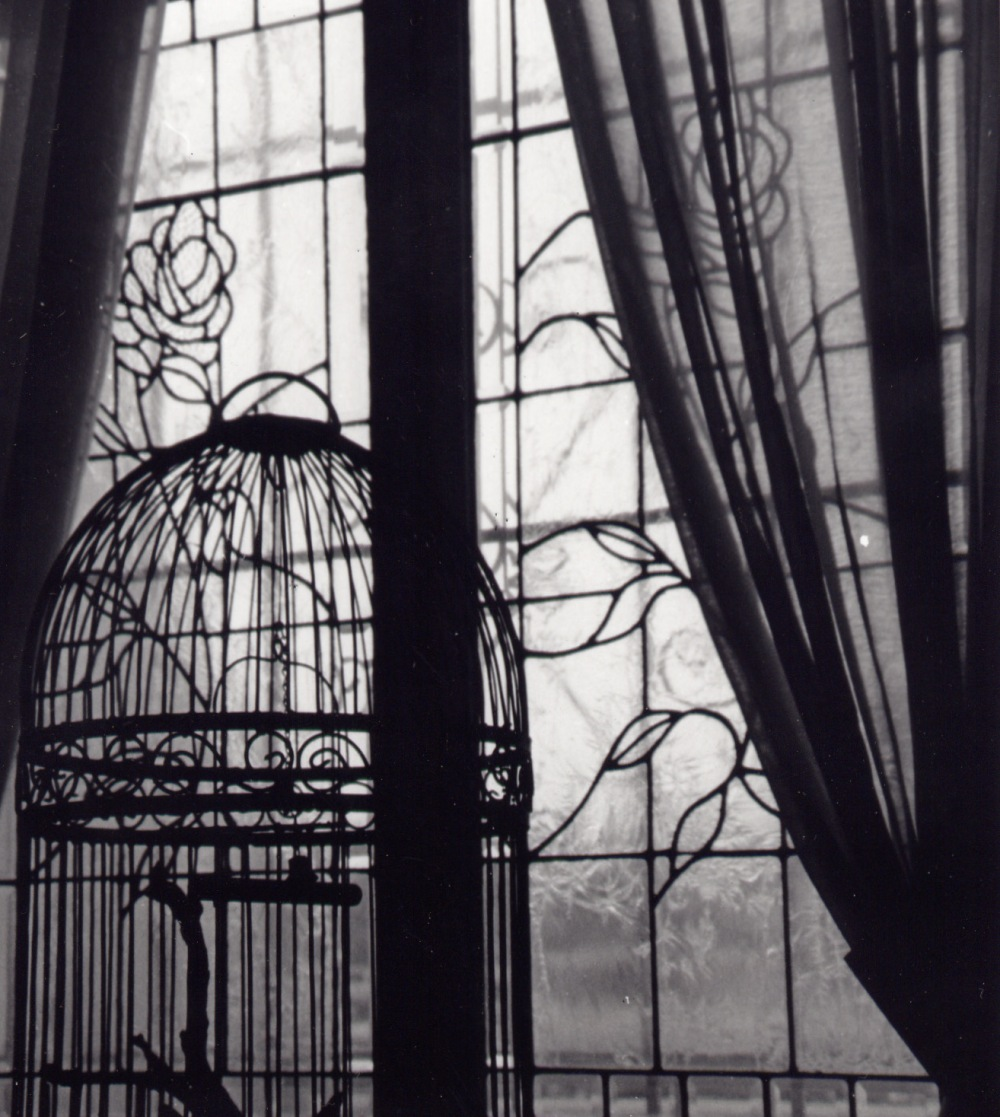 Bird_Cage_by_Farrago